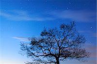 sky stars - Kurihara, Miyagi, Japan Stock Photo - Premium Rights-Managednull, Code: 859-07150105