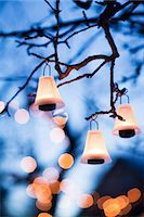 Illuminated lanterns hanging on branches Stock Photo - Premium Royalty-Freenull, Code: 6102-07158178