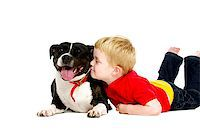 Young boy wearing jeans and a red T-shirt laid with his arm around a black and white staffordshire bull terrier isolated on a white background Stock Photo - Royalty-Freenull, Code: 400-07166440