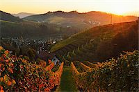 Vineyard Landscape and Sasbachwalden Village, Ortenau, Baden Wine Route, Baden-Wurttemberg, Germany Stock Photo - Premium Royalty-Freenull, Code: 600-07199403
