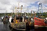 Trawler fishing boats in Stornoway, Outer Hebrides, United Kingdom Stock Photo - Premium Rights-Managed, Artist: Robert Harding Images, Code: 841-07202031