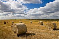 Straw bales, Swinbrook, Cotswolds, United Kingdom Stock Photo - Premium Rights-Managednull, Code: 841-07202050
