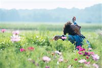 release - A woman standing among the flowers with her arms outstretched. Pink and white cosmos flowers. Stock Photo - Premium Royalty-Freenull, Code: 6118-07203348