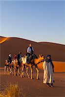Tourists on camel safari, Sahara Desert, Merzouga, Morocco, North Africa, Africa Stock Photo - Premium Rights-Managed, Artist: Robert Harding Images, Code: 841-07204405