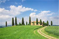 Farm house with cypress tree, Pienza, Val d'Orcia, UNESCO World Heritage Site, Tuscany, Italy, Europe Stock Photo - Premium Rights-Managednull, Code: 841-07204497