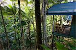 Silky Oaks Lodge in the treetops of Daintree Rainforest, Queensland, Australia Stock Photo - Premium Rights-Managed, Artist: Robert Harding Images, Code: 841-07204971