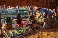 southeast asian - Floating market, Ywama village, Inle Lake, Shan State, Myanmar (Burma), Asia Stock Photo - Premium Rights-Managednull, Code: 841-07206229
