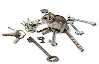 Djungarian Hamster on the old keys Stock Photo - Royalty-Freenull, Code: 400-07210703