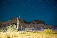 extreme terrain - Starry night over cactus filled desert in Tucson, Arizona, USA Stock Photo - Premium Royalty-Freenull, Code: 653-07233979