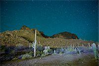 extreme terrain - Starry night over cactus filled desert in Tucson, Arizona, USA Stock Photo - Premium Royalty-Freenull, Code: 653-07233984