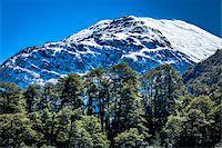 View of mountain top, The Andes Mountains at Nahuel Huapi National Park (Parque Nacional Nahuel Huapi), Argentina Stock Photo - Premium Rights-Managednull, Code: 700-07237906