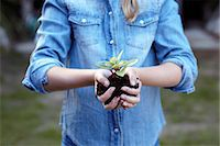Close up of girl holding plant in pot soil Stock Photo - Premium Royalty-Freenull, Code: 649-07239024
