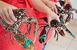 Women holding fresh lobsters Stock Photo - Premium Royalty-Freenull, Code: 649-07239617