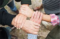 Four people touching hands, high angle Stock Photo - Premium Royalty-Freenull, Code: 649-07239734
