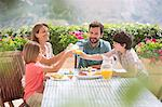 Family toasting orange juice glasses at table in garden Stock Photo - Premium Royalty-Free, Artist: Blend Images, Code: 6113-07241965