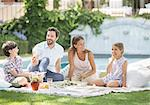 Family enjoying picnic in grass