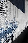 Plants casting shadow on textured wall of modern building