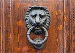 Old door knocker in the form of a lion head, Florence, Italy