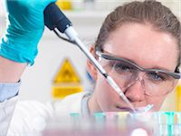 Scientist pipetting sample into an eppendorf vial in laboratory Stock Photo - Premium Royalty-Freenull, Code: 649-07279849
