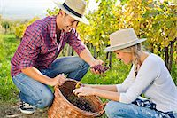 Grape harvest, young couple checking grapes, Slavonia, Croatia Stock Photo - Premium Royalty-Freenull, Code: 6115-07282913