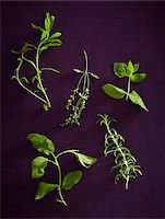 five - Overhead View of Herbs, Studio Shot Stock Photo - Premium Royalty-Freenull, Code: 600-07311268