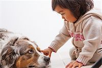Toddler Girl touching Australian Shapherd Dog's Eye Stock Photo - Premium Royalty-Freenull, Code: 600-07311576