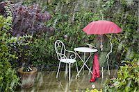 Woman uses laptop in the garden despite the rain Stock Photo - Premium Royalty-Freenull, Code: 6106-07349955