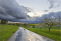 road landscape - Country Road after Rain Stock Photo - Premium Royalty-Freenull, Code: 6106-07350856