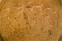 Close of the impressions, ancient rock art of animals and people made on the surface of the rock at  Twyfelfontein World Heritage Site at Uibasen Conservancy, Damaraland, Namibia. Stock Photo - Premium Royalty-Free, Artist: Jason Friend, Code: 6118-07353089
