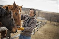 farming (raising livestock) - A man fixing a post and rail fence around a horse paddock. Stock Photo - Premium Royalty-Freenull, Code: 6118-07354196