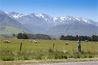 Kaikoura (New Zealand) Stock Photo - Premium Royalty-Freenull, Code: 618-07400191