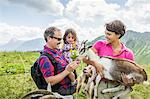 Parents and daughter feeding goats, Tyrol, Austria