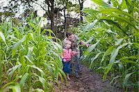 farm and boys - Farmer and son in field of crops Stock Photo - Premium Royalty-Freenull, Code: 649-07437981
