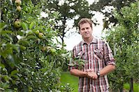 single fruits tree - Farmer standing in apple orchard Stock Photo - Premium Royalty-Freenull, Code: 649-07437986