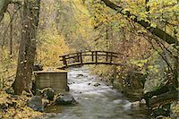 A river running through American Fork Canyon. Small wooden bridge. Autumn foliage, and fallen leaves. Stock Photo - Premium Royalty-Freenull, Code: 6118-07440637