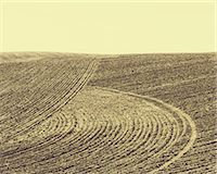 plow - Ploughed earth furrows, patterns on the surface of the soil on farmland near Pullman, Washington, USA Stock Photo - Premium Royalty-Freenull, Code: 6118-07440901