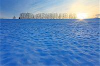 fantastically - Biei, Hokkaido Stock Photo - Premium Rights-Managednull, Code: 859-07441822