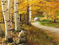 Autumn colors Stock Photo - Premium Rights-Managednull, Code: 859-07441994