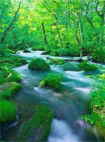 streams scenic nobody - Oirase mountain stream, Aomori Prefecture Stock Photo - Premium Rights-Managednull, Code: 859-07442165