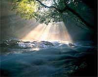 streams scenic nobody - Kumamoto Prefecture, Japan Stock Photo - Premium Rights-Managednull, Code: 859-07442371