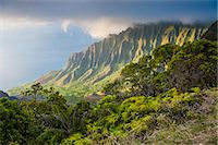 Kalalau lookout over the Napali coast from the Kokee State Park, Kauai, Hawaii, United States of America, Pacific Stock Photo - Premium Royalty-Freenull, Code: 6119-07443827