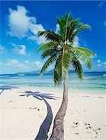 seychelles - Anse Source D'Argent, La Digue, Seychelles, Africa Stock Photo - Premium Royalty-Freenull, Code: 6119-07452016