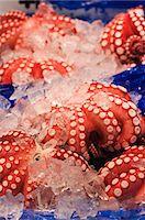 food - Octopus at Tsukiji fish market, Tokyo, Honshu Island, Japan, Asia Stock Photo - Premium Royalty-Freenull, Code: 6119-07452387