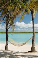 Hammock between palm trees, Providenciales, Turks and Caicos Islands, Caribbean Stock Photo - Premium Royalty-Freenull, Code: 614-07453281