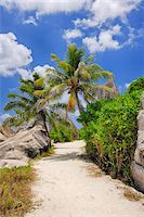 seychelles - Footpath through Rocks and Palm Trees, Anse Source d´Argent, La Digue, Seychelles Stock Photo - Premium Royalty-Freenull, Code: 600-07453861