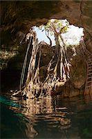Cenote Entrance Stock Photo - Premium Royalty-Freenull, Code: 6106-07454648