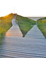 fork - Forked Wooden Walkway Stock Photo - Premium Royalty-Freenull, Code: 6106-07454733