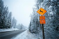 Deer crossing sign along snowy road. Stock Photo - Premium Royalty-Freenull, Code: 6106-07454767