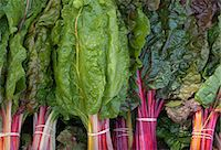 supermarket not people - Swiss Chard at a farmers market Stock Photo - Premium Royalty-Freenull, Code: 6106-07455098