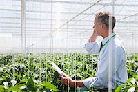 farm phone - Businessman talking on cell phone in greenhouse Stock Photo - Premium Royalty-Freenull, Code: 635-07456600